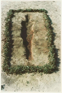 Untitled by Ana Mendieta, 1978 - a dirt space where the shape of a human figure has been carved out to perhaps 20 cm deep. This in turn is surrounded by a rectangular line of wild grass